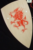 dragon-shield